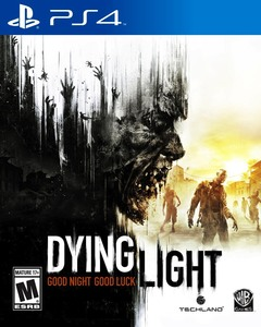 Dyinglight capa